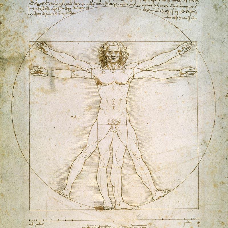 витрувианский человек и размер татуировки